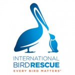 INTERNATIONAL BIRD RESCUE & RESEARCH, IBRR