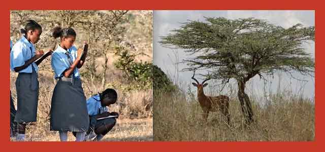 Daraja Means Bridge & Opens With Field Trip To El Karama Wildlife Conservancy